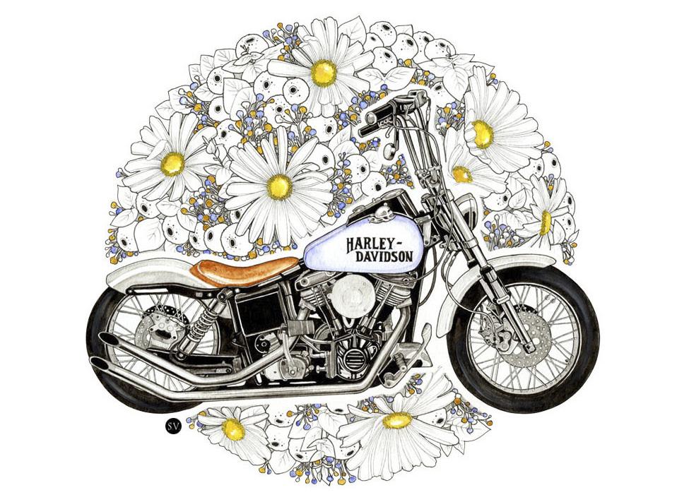 Elegant Motorcycle Illustrations By Sophie Varela Moto Lady
